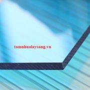 tam-nhua-lay-sang-dac2